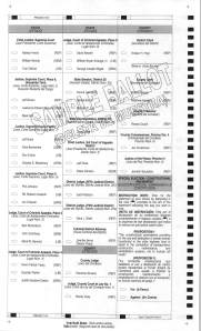 Precinct 4 Sample Ballot with Write-in Candidates_Page_2